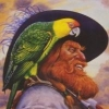 Redbeard the Pirate